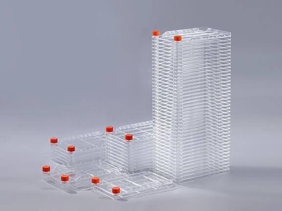 Multi-layer biofactory process and precautions